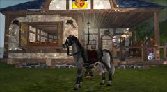 Конь Обычный